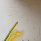 Aquarelle sur soie - Tournesol photo (1)
